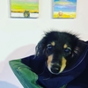 シニア犬応援アート。