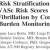 AF burdenを追加した心房細動患者の塞栓症予測能