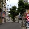 東山商店街の脇にある御神木と宝くじ