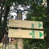 シャモニーでハイキング5日目、ロリア『Loriaz』