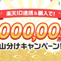 購入で100万ポイント山分けキャンペーン!