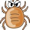 ダニ媒介感染症の恐怖!マダニから登山中身を守る対策とまとめ