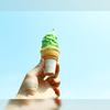 世界初?!名物の抹茶ソフトクリームを求めて和歌山のグリーンコーナーへ!