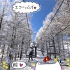 【長野 スキー場】エコーバレースキー場★2020年ゲレンデレポ★雪質最高!【スノーボード】