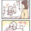 ことりのアイテム【069】