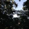 メープル那須高原キャンプグランド【朝食はホットサンドで決まり!】
