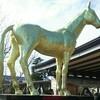 よそう屋 のりべえの京都牝馬ステークス GⅢ 2018.217