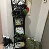 【しがない歯学生の本当の日常】さすが北海道!! 中心から30分でスノボができる!! ナイターで初滑りしてきた!!