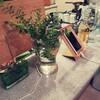 部屋の緑が枯れても安心!常に供給される植栽スキーム