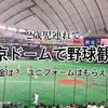子連れで野球観戦in東京ドーム!ユニフォームがもらえるって本当?子供が飽きない楽しみ方4選