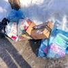 【感想】カナダでゴミの戸別収集を体験して〜日本でも広まるかな?