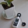 室内で育成する観葉植物の為にデジタル照度計で照度を測定、光が足りているのか考えてみる