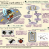 AI RC Carをサマライズしたペーパーを作成しました。