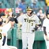 阪神タイガース 広島、DeNA戦~僅差の勝利~【プロ野球】