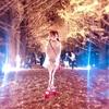 国営昭和記念公園〜イチョウ並木〜お写真大量