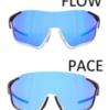 【インプレッション】Redbull SPECTサングラスを2ヶ月使った感想