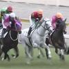 6.12  札幌競馬 注目馬