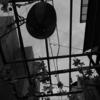 赤羽の風景~RICOH GRで撮影~