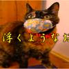 斉藤一人さん 歯の歯が浮くようなお世辞