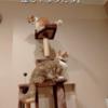 雨田甘夏、しみじみです。【猫とタワーと成長事情】