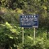 北伊豆 (?) の林道ツーリング