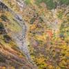 【M26】御岳山の紅葉と星空を撮る。〈登山〉