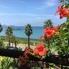 糸島の夏休み!青い海と空とのんびり感♪