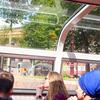アムステルダム!運河とチューリップの国観光<Heineken Experience、運河クルージングなど>