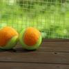 小学生のテニス教室 息子がテニス始めました