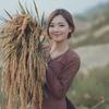 ベトナムの農村カラー
