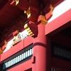 新年の初詣は鎌倉観光ついでに『鶴岡八幡宮』に行こう!