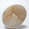 「富士越龍図 北斎の石3」現代アート 石 Contemporary Art vol.23