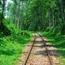 セルフイメージの根っこを探す、過去への旅。