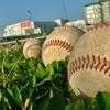 明日プロ野球開幕!