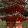 早春の岩船寺を訪ねる