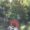 【京都旅行記1】伏見稲荷大社は山の頂上まで登れなかった