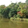No:077【和歌山県】池に小さなジャングルみたいな島がプカプカ!「浮島の森」を探検だ!