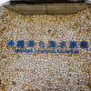 沖縄美ら海水族館でジンベイザメに感動する。