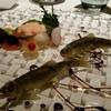 東京銀座おすすめのレストラン