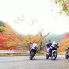 王子神社→お松大権現 徳島の猫の神様はしごツーリング
