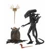 【エイリアン】アルティメット 7インチ『40th アニバーサリー / エイリアン・ビッグチャップ』可動フィギュア【ネカ】より2019年11月発売予定♪