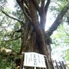 福島の被災地 視察ツアー 2018