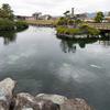 杖ノ淵公園の池(愛媛県松山)