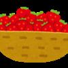 イチゴはその日のうちに食べたほうがいい