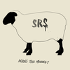 【 1日1枚CDジャケット22日目】ACROSS THE MINDSET / S.R.S