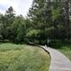 【ペットと遊ぶ】長野県立科町:御泉水自然園はワンコの天国 | 平地より10℃以上涼しいのでワンコが満足するまで散歩できます