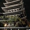 【クラピカを思わせる塔】八坂の塔×HUNTER×HUNTER