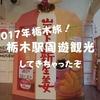 【栃木市観光】栃木駅周遊旅行!たらふく美味いもの食べてきた【2017忘年会】