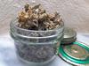 ウルトラ生姜 ( 乾燥生姜 ) のカロリー