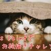 Ibis paintでお絵描きチャレンジ!!